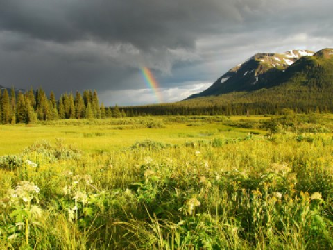 Sacred Headwaters with Rainbow. Copyright Brian Huntington