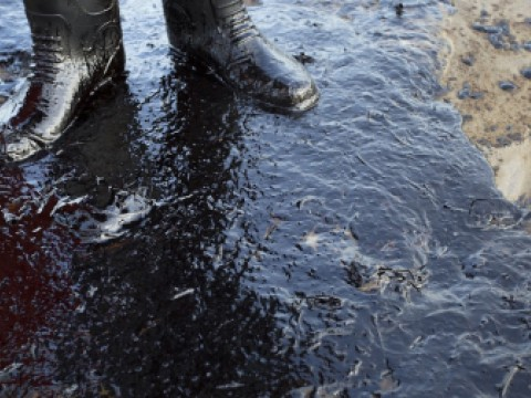 Close up image of rubber boots standing in an oil spill.