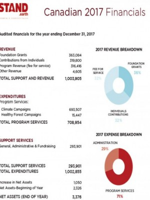 2017 Canadian Financial Summary - Stand