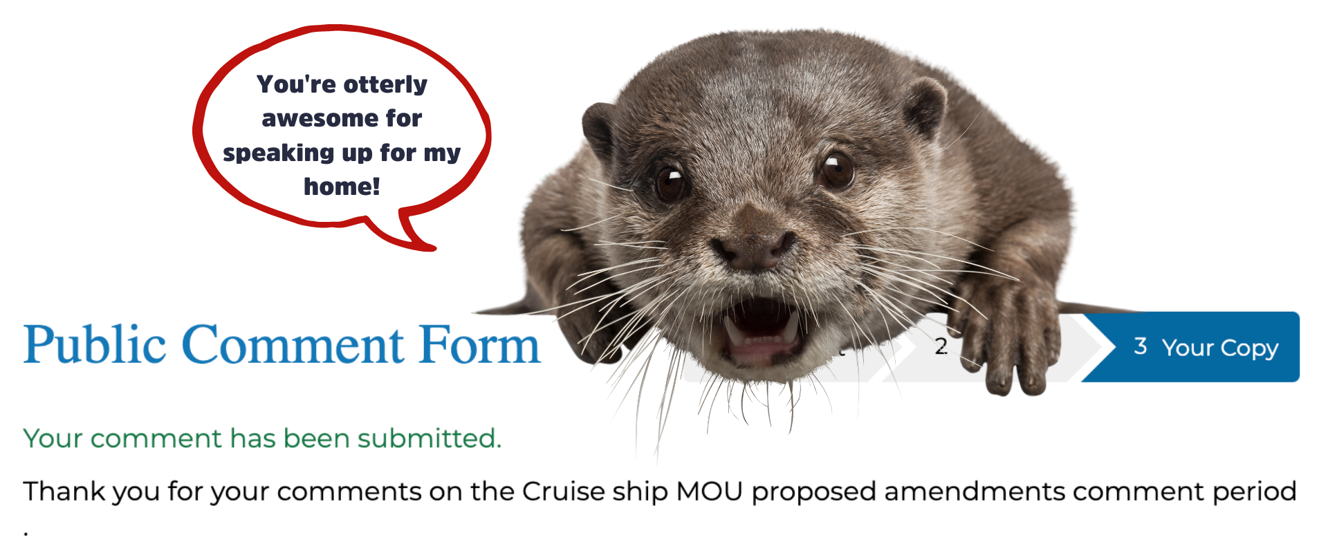 Frankie the otter thanks you for submitting comment to MOU