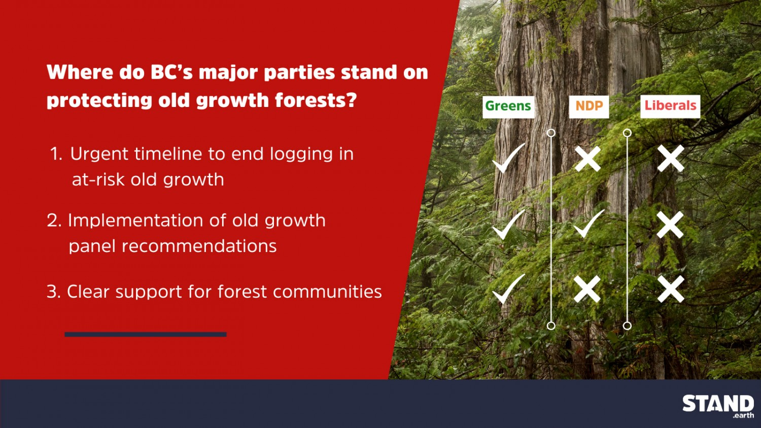 Score card graphic on old growth protection re: where major parties in B.C. stand