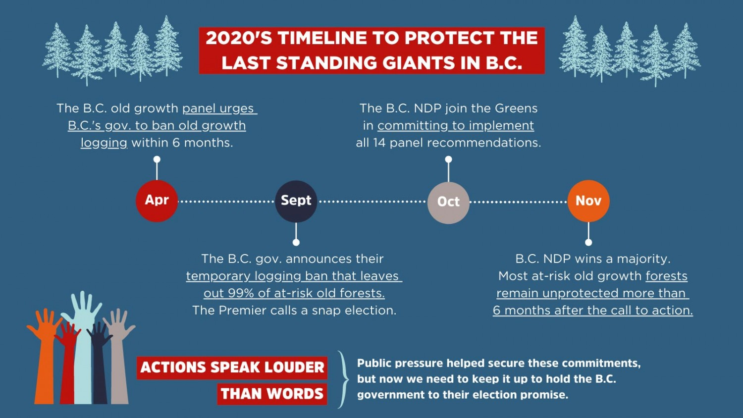 Graphic with 2020's timeline on protecting old growth in B.C.