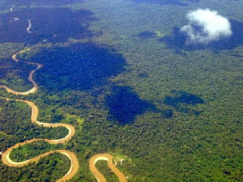 Aerial look of the Amazon
