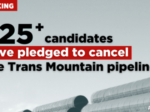 Graphic reading 125 candidates pledged to cancel trans mountain
