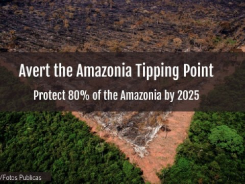 Avert the Amazonia Tipping Point
