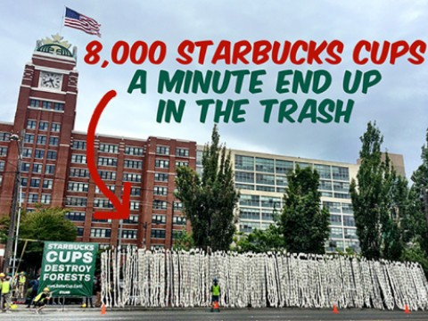 8,000 Starbucks cups a minute end up in the trash