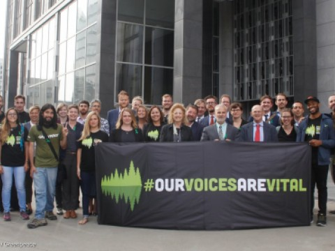 Our Voices are Vital Greenpeace and Stand