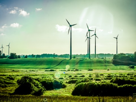 Wind turbines stand in the distance in a green field