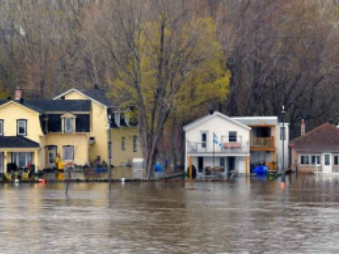 The severe flooding on the Quebec side of the swollen Ottawa River. Credit: Paul McKinnon