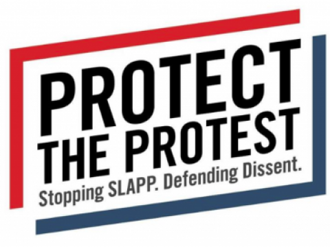 protect-the-protest-logo.png