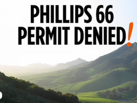 Phillips 66 Denied - Twitter Share