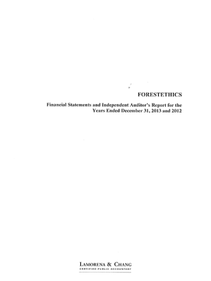 2013 Audit Report Cover