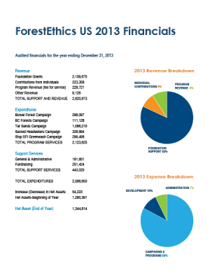 2013 Financials Cover
